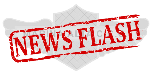 This image has an empty alt attribute; its file name is monthly_newsflash.png